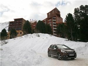 Peugeot 2008 2014 вид спереди