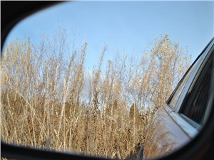 Предпросмотр dfm h30 cross 2015 боковое зеркало