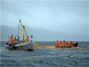 Рыбаки выходят на промысел даже в плохую погоду