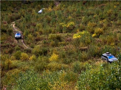 Предпросмотр land rover discovery sport 2015 вид сверху