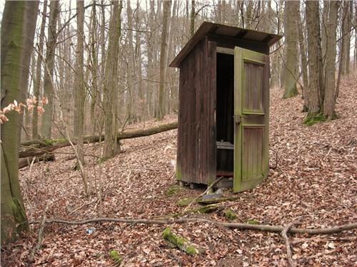 Москвичам дадут возможность бесплатно парковаться около общественных туалетов