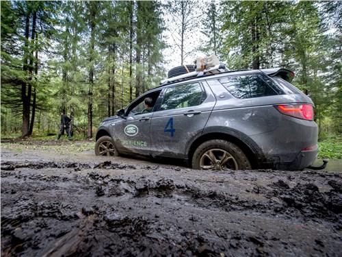 Предпросмотр land rover discovery sport 2015 вид сбоку