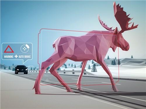 Сегодня автомобили способны «видеть» препятствия на дороге и автоматически замедляться перед ними