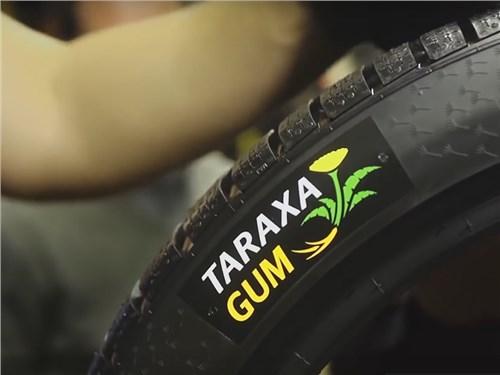 Одуванчиковые шины