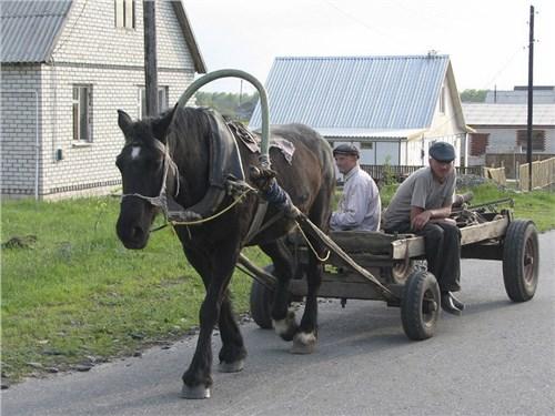 В России могут ввести новую категорию водительских прав
