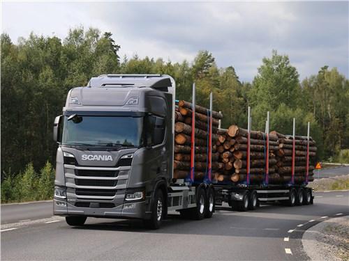 Scania S 2016 перевозка леса