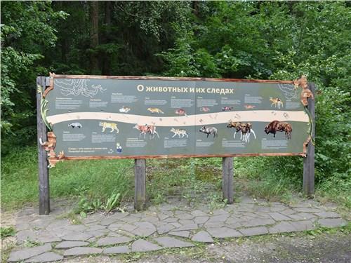 На всей тропе к питомнику расставлены щиты с любопытной, иногда даже забавной информацией об обитателях заповедника