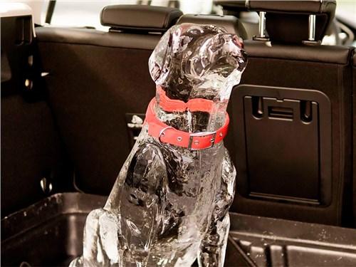 Ford напомнил о пагубном влиянии жары на пассажиров машин