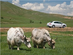 Типичный пейзаж у дороги, ведущей из Улан-Батора в Улан-Удэ