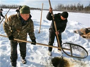 Ловля рыбы куйууром в озере Сулуй