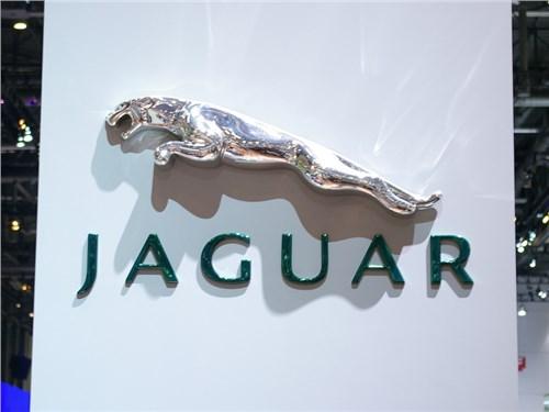 Продажи Jaguar Land Rover в России сократились на 11 процентов