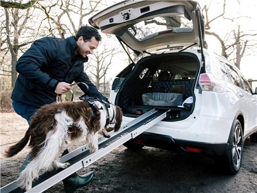 Новость про Nissan X-Trail - Nissan X-Trail 4Dogs