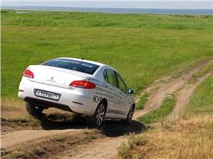 Peugeot 408 вид сзади в поле