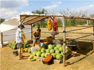Рынок арбузов и дынь
