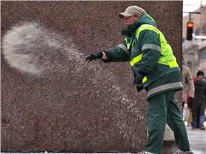 Экологи: реагенты угрожают здоровью москвичей