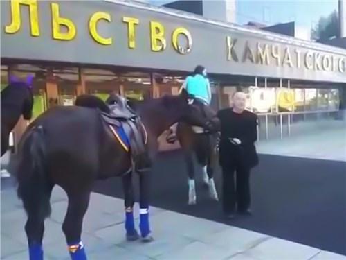 Из-за дорогого бензина депутат пересел на лошадь