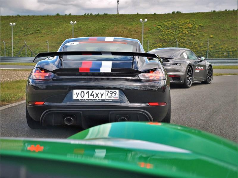 Porsche Cayman GT4 (2020) вид сзади