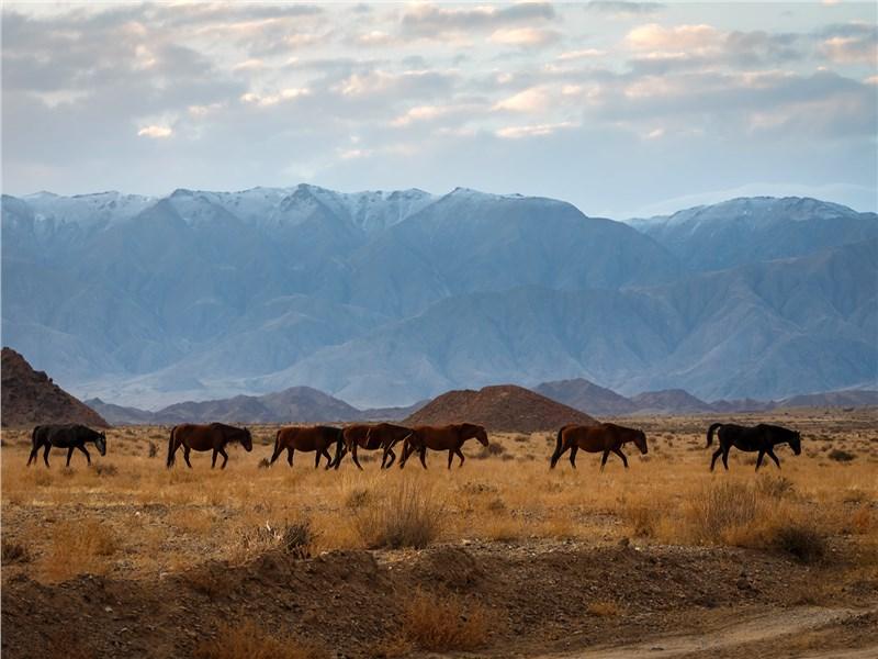 Горными пейзажами Киргизии можно любоваться бесконечно