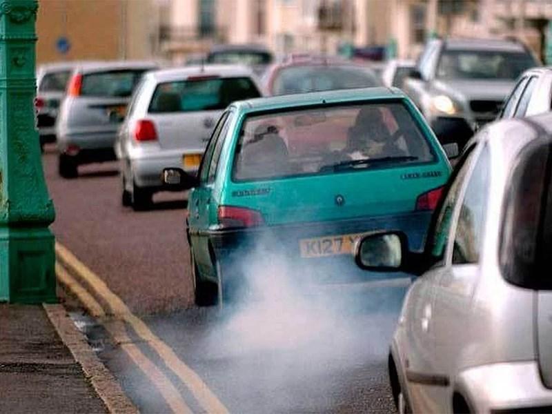 Домашний скот загрязняет воздух сильнее автомобилей