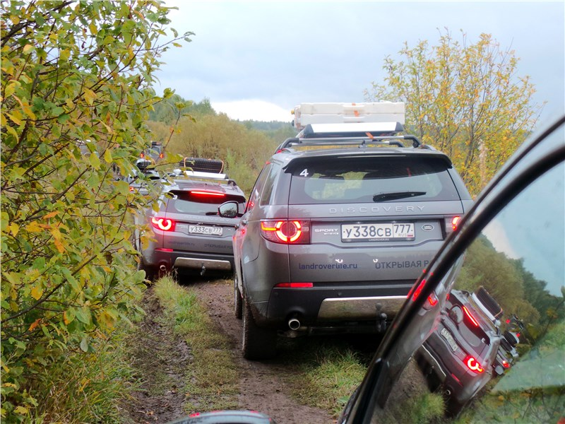 Land Rover Discovery Sport 2015 вид сзади
