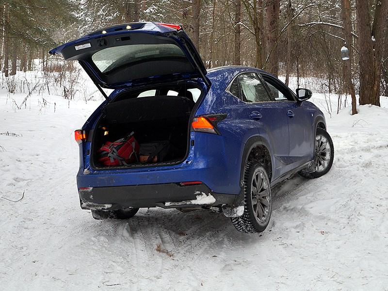 Lexus NX 2014 вид сзади