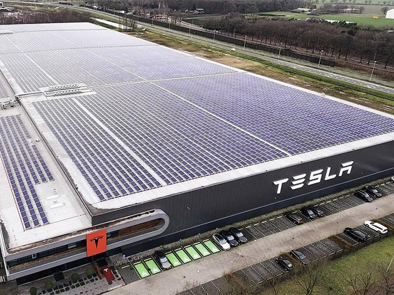 Профсоюз змей и ящериц заморозил строительство завода Tesla