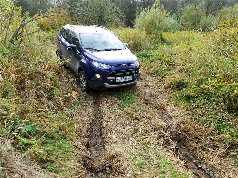 Ford EcoSport 2013 на лесной тропе