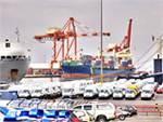 «Фонящие» машины из Японии останутся в России