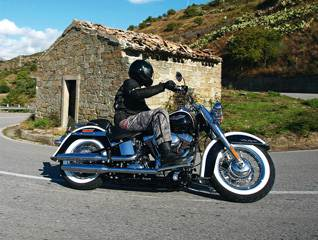 Softail Fat Boy Special,Deluxe,Heritage,Softail Blackline,V-Rod,Night Rod Special,Muscle.