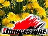 Bridgestone будет делать шины из одуванчиков
