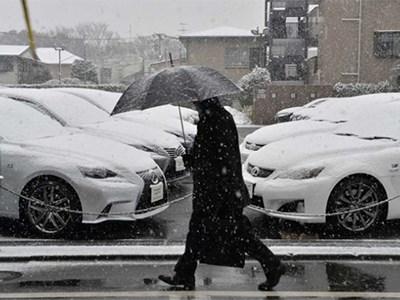 Toyota, Suzuki и Honda приостановили производство автомобилей в Японии