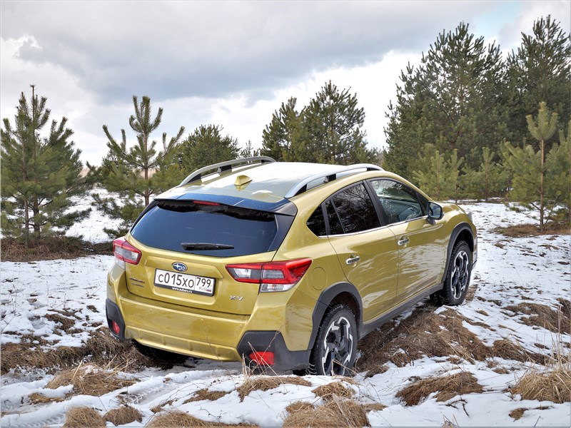 Subaru XV (2022) вид сзади