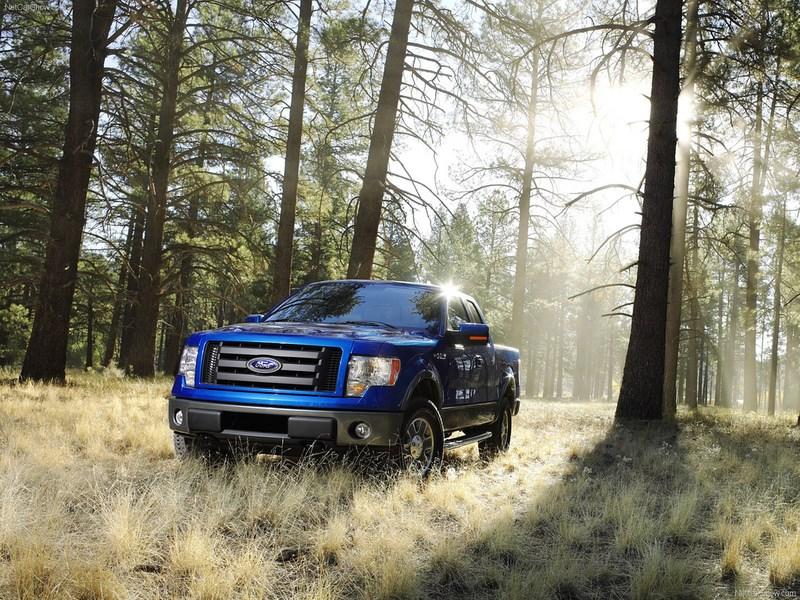 Ford поделился планами по расширению своей «зеленой» линейки