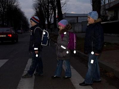 В России введут единый стандарт на фликеры