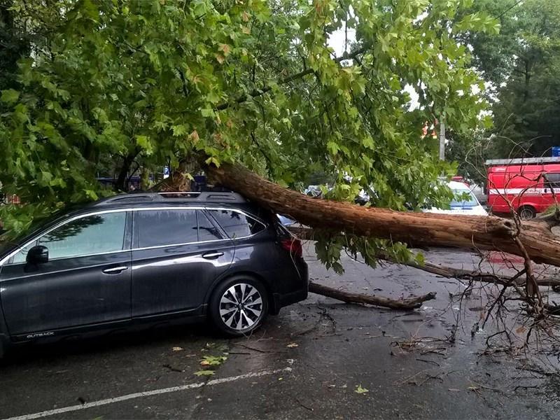 Водителей предупредили о сильном ветре и ливне
