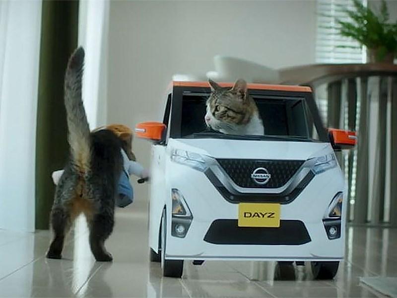 Nissan рекламирует новый кей-кар с помощью котиков