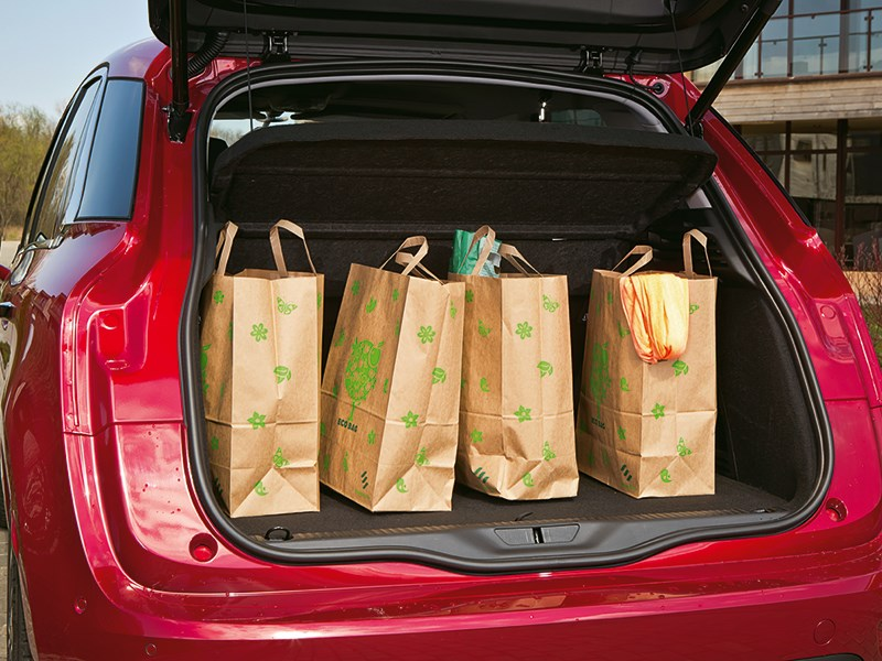 Citroen C4 Picasso 2014 сумки в багажнике