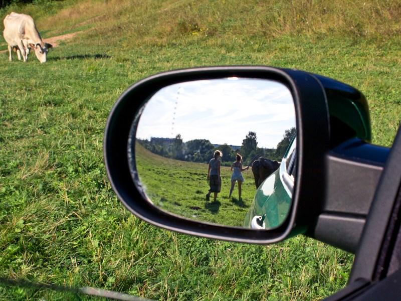 Renault Clio RS 2010 зеркало заднего вида