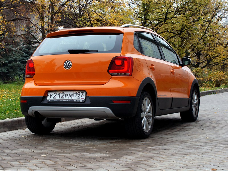Volkswagen Cross Polo 2010 вид сзади