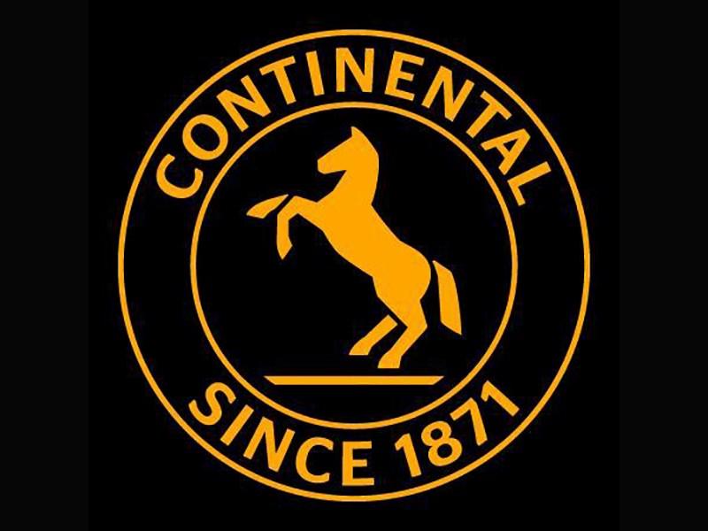 Continental могут разделить на несколько компаний