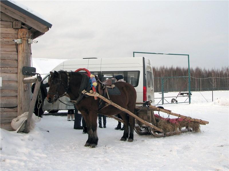 Традиционные сани мощностью в одну лошадиную силу - двухлитровый мотор нашего Forester обладал 150 «конями». Для любителей быть чуть быстрее остальных есть мотор 2.5