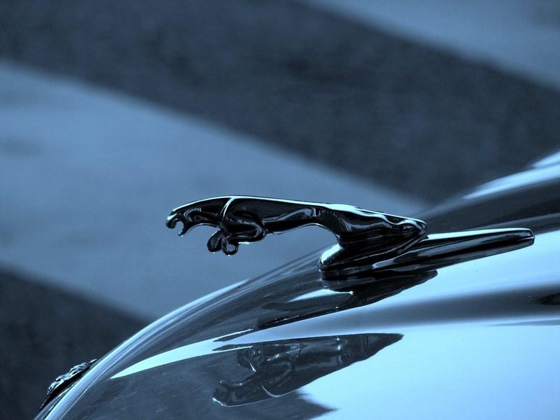 Продажи Jaguar на российском рынке в июне выросли более чем в два раза