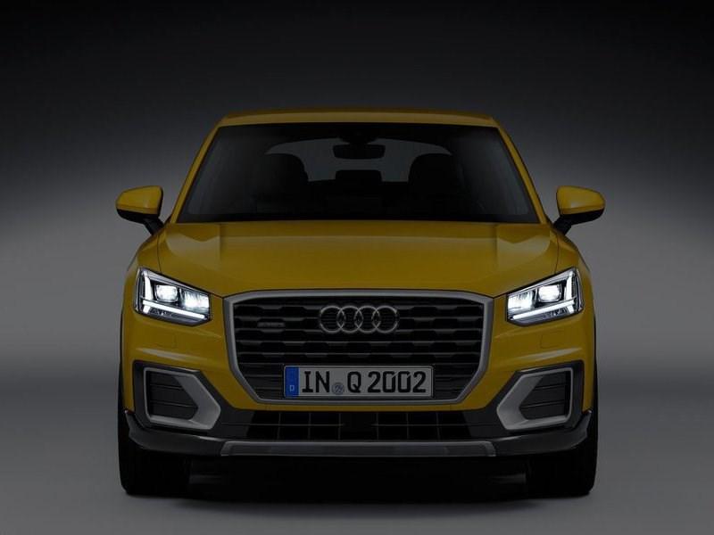 Audi установит в свои автомобили фильтры для аллергиков